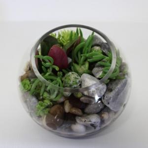 Fishbowl Terrarium Standard Woodford Kilcoy Florist
