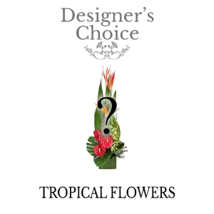 Designers Choice - Tropicals