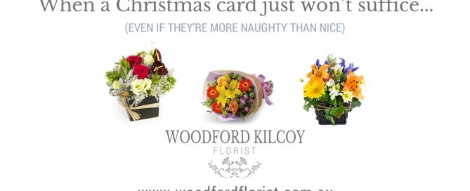 Woodford Kilcoy Florist - Christmas Website Launch