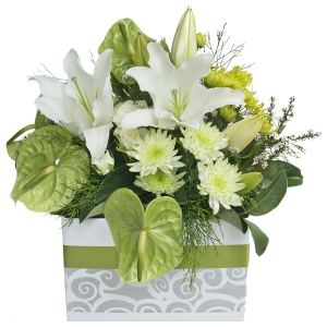 Flowers - Anthea