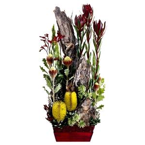 Flowers - Aussie Bush