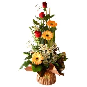 Flowers - Corella