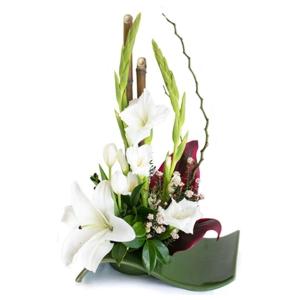 Flowers - Elegance