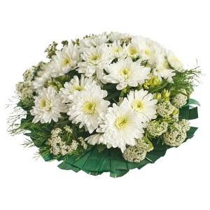 Flowers - Fazie