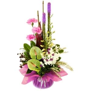 Flowers - Flirt