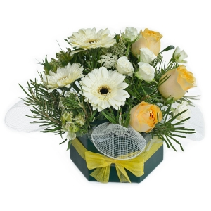 Flowers - Penny