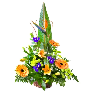 Flowers - Sunshine