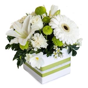 Flowers - Tessa
