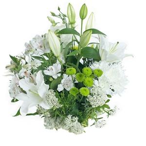 Flowers - Virginia